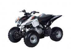 Квадроцикл (снегоболотоход 4-х колесный) KAYO TOR 250