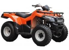 Квадроцикл 225 WELS BISON ATV
